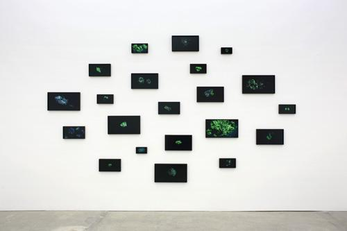 Amie Siegel, <em>RM # 1-21</em>, 2014, Installation view, Suite of 21 chromogenic color prints, Dimensions variable, Images courtesy of the artist and Ratio 3, San Francisco