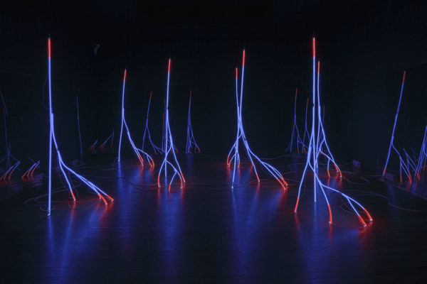 Silvestre Pestana, Fractal Trees, 2003, Argon tubes and glass (7 elements), Dimensions Variable, Installation view from the exhibition, Silvestre Pestana: Tecnoforma, at Serralves Museum of Contemporary Art, Porto, PT, 2016. Photo: Filipe Braga © The Serralves Foundation. Courtesy the Artist and The Serralves Foundation, Porto, PT