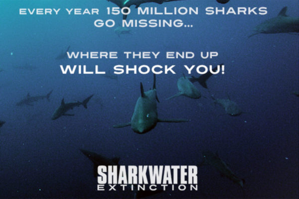 Sharkwater Screening header image