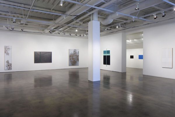 N. Dash, Installation View, Museum of Contemporary Art Santa Barbara, 2019, Courtesy the Artist and MCASB, Photo: Alex Blair.
